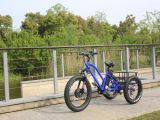 20 Inch 500W Fat Tire Mountain Electric Tricycle for Adult