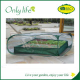 Onlylife PE Fabric High Quality Foldable Greenhouse Plant Cover
