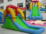 Inflatable Water Slides (Qw002)