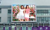 Outdoor P8 LED Screen with The Lowest Price
