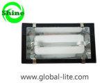 (TL-5103) Energy Saving Induction Tunnel Light