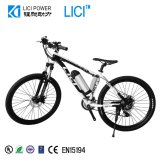 Electric Bike (M2)