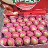 Fresh Unbagged Qinguan Apple Factory From China