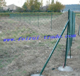 French Market PVC Coated Chain Link Fence for Garden
