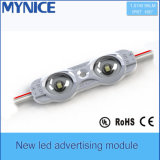 2X1w 95lm/PC High Brightness Injection LED Module DC12V SMD2835 IP68 LED Module for Light Box