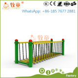 Cowboy Outdoor Gym Goods for Amusement Park (MT/OP/GYM1)