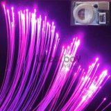 LED Optic Fiber Lighting for Decoration