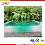 SGS Appproved Polycarbonate Hollow Sheet with Ten Years Quality Guarantee (YM-PC-035)