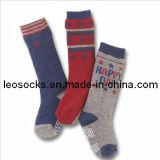 Children and Kids Cotton Socks (DL-BB-75)
