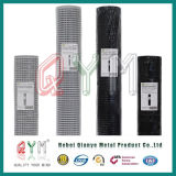 Hot Dipped Galvanized Welded Wire Mesh Panel / Welded Wire Mesh Rolls