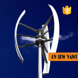 Chinese 1kw Vertical Axis Wind Turbine for Home Use