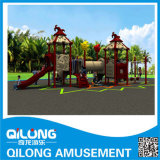 Competitive Price Children Outdoor Playground Equipment (QL14-014A)