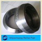 stainless Steel Mss Sp-97 A105 Threadolet /Weldolet/Sockolet 3000#