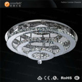 LED Ceiling Light, Crystal Ceiling Lighting, Ceiling Light Fixture, Lamp Light (OM810-70)
