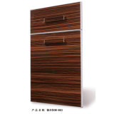 Acrylic Wooden Mdfkitchen Cabinet Door (DM9659)