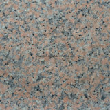 Natural Granite & Marble Wall Floor Tiles for Flooring