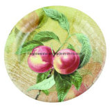 Disposable Colorful Paper Plates, Disposable Party Paper Plate, Eco-Friendly
