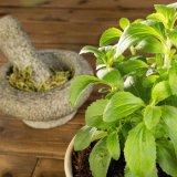Organic Sweet Leaves Stevia Extract Sugar