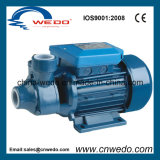 Clean Water Pump (PM-50) for Garden Use