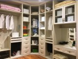 Modern Bedroom European Walk in Wooden Wardrobe Cupboard (ZH977)