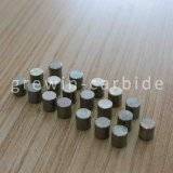 Tungsten Carbide Weight Rod with High Quality