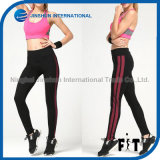 Hot Selling Side Stripe Tight Sport Pants Yoga Leggings for Women