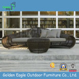 Leisure Patio Rattan Furniture Sunbed