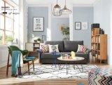 Simple Designs 2017 Newest Fabric Sofa Cum Bed (NB-004)