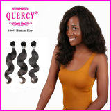 Quercy Hair Best Selling Chinese Virgin Hair Body Wave Natural Color Natural Human Hair (BW-025)