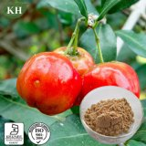 Health and Nutritious Acerola Cherry Extract Vitamin C 5%, 7%, 17%, 25%
