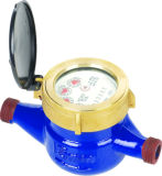 Multi Jet Dry Dial Water Meter (Cast Iron Body) (LXSG-15E-50E)