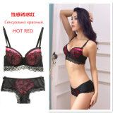 Wholesale Women′s Fashion Lace Bra Set with Push up Pads
