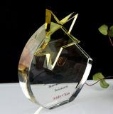 High Quality Optical Star Crystal Glass Shield Trophy Award