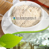 Hot Selling 80~200 Mesh Dehydrated Garlic Powder