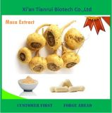 High Quality Root Extract Maca Peru Herb