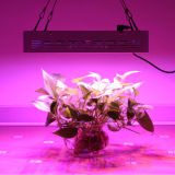 LED Grow Light 380nm-840nm Full Spectrum 30-100W