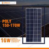 Morogo Poly Solar Panel / Module 150W - 170W for Energy System