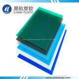 Twin Wall Plastic Polycarbonate Hollow Panel for Building Roof