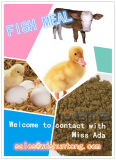 High Protein (60%min) Fish Meal for Animal Feed