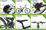 Specialized Electric Bike Bicycle for Sale in China