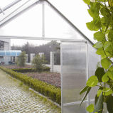Classic Design & Walk Series Green house (SW6)