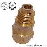 Copper Apply Auto Lathe Parts for Electric Motor Shaft