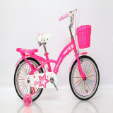 Beautiful Children Bicycle for 10 Years Old Child
