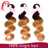 Fast Shipping Feibin Hair Products Virgin Malaysia Ombre Hair Weft