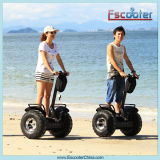 Best Sell 2 Wheel Balancing Electric Chariot