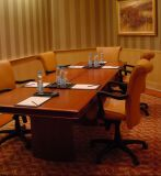 Conference Table and Chair/Meeting Room Furniture/Dining Sets Gld-029)