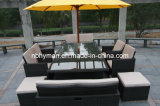 Rattan Outdoor Furniture (FSS-BD-1049C)