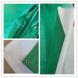 Green/White PE Tarps/China PE Tarpaulin Factory