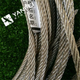 Stainless Steel /AISI304 or 316 Steel Wire Rope for Crane