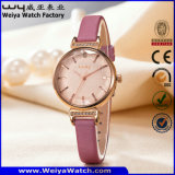 Hot Selling OEM/ODM Leather Strap Quartz Ladies Watch (Wy-102B)